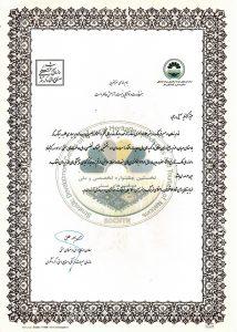 تقدیر معاون صنایع دستی و هنرهای سنتی کشور از سهیل رجبی